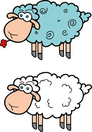 sheeps: cartoon sheeps Illustration