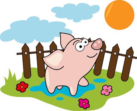 chancho caricatura: Dibujos animados de cerdo