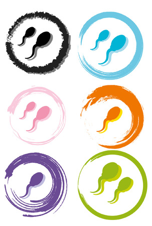 Creative design of sperm   Vector