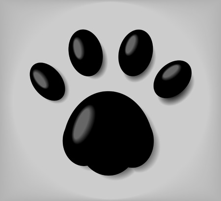 cat paw: Creative design of dog and cat paw
