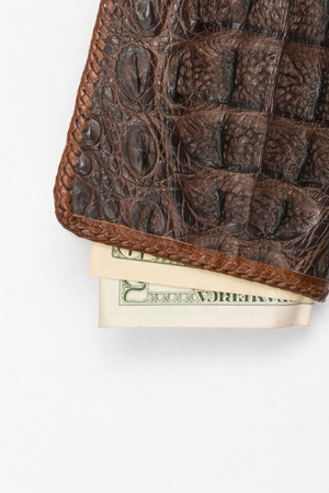 Hand made purse from alligator skin with money photo