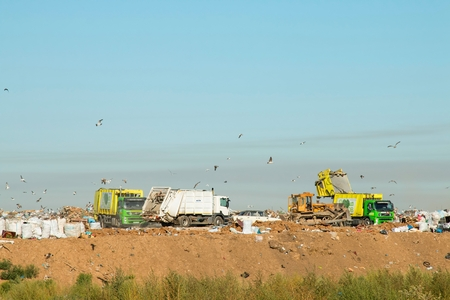 Rostov - on - Don, Russia - August 26, 2015: Birds over the Heap of garbage in dump, established in Rostov - on - Don. Editorial
