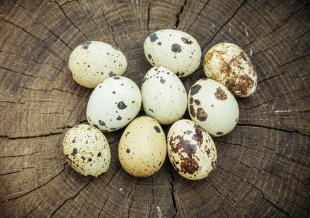 Group of quail eggs on wooden surface. Natural healthy food concept.