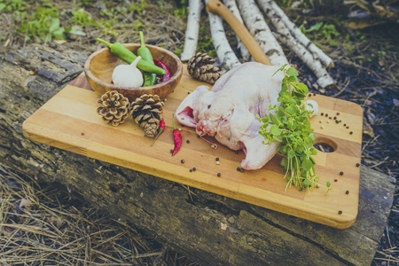 Raw chicken with spices on a wooden board in forest. Natural healthy food concept. Banque d'images