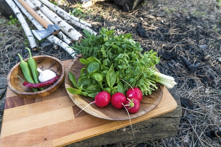 Fresh vegetables on the cutting board in forest. Natural healthy food concept. Banque d'images