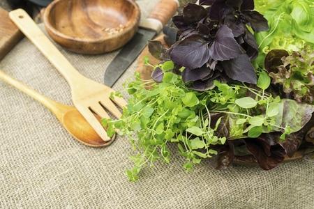 Feuilles de basilic bio, de thym et de laitue bio avec des ustensiles de cuisine rustiques. Concept de nourriture saine naturelle.