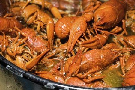 freshwater fish: Boiled crawfish with spices. Great as a beer snacks. Stock Photo