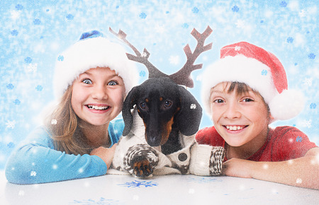 plays: children plays with dachshund in Christmas masks of Santa, Snow Maiden and deer Stock Photo