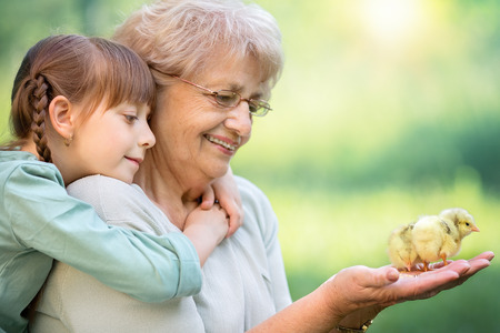 Grandmother with grandaughter are playing with chickens outdoors Stock Photo