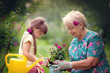 Abuela feliz con su nieta que trabaja en el jardín Foto de archivo - 73109090