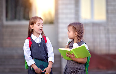 Happy schoolgirls are going to school with books Stock Photo