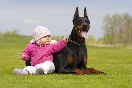 cute little baby girl and big black Doberman are sitting together on the grass