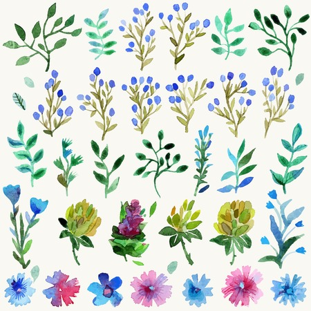 Watercolor vector set with leaves and flowers. Hand drawn plant. Spring or summer design for invitation and greeting cards.
