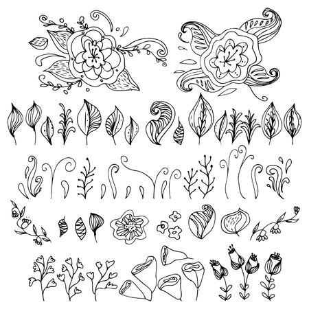 Set of hand drawn flowers and leaves. Decoration elements for design invitation, wedding cards, valentines day, greeting cards.