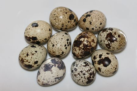 allergic ingredients: quail egg instead of chicken egg