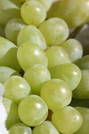 fresh green grapes Stock Photo - 5219157