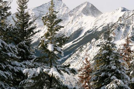 british  columbia: mountains in british columbia, canada