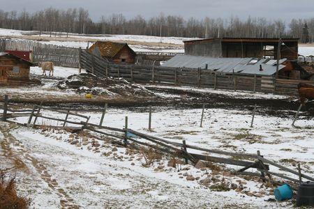 canadian farm in winter photo