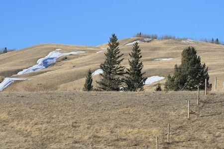canadian prairie in alberta photo