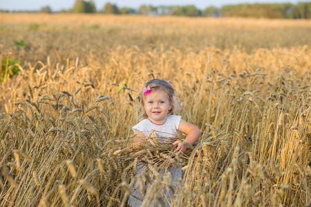cute young farm girl: Little beautiful girl in the rye field.