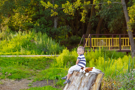 green life: Little boy with blue eyes, sitting on a tree stump in the forest in summer