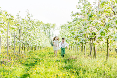 Brother and sister are running around the flowering garden. A boy and a girl are resting in a blooming garden in the spring. Children have fun in the apple orchard before sunset Reklamní fotografie