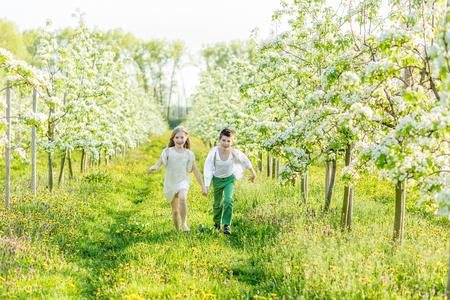 Broer en zus rennen rond in de bloeiende tuin. Een jongen en een meisje rusten in een bloeiende tuin in de lente. Kinderen hebben plezier in de appelboomgaard vóór zonsondergang