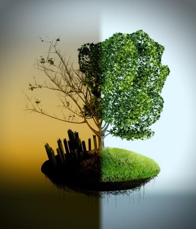 Der Baum Kosten auf der verschmutzten und reinen Erde