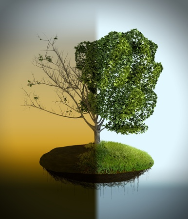 emissions: The tree costs on the polluted and pure earth