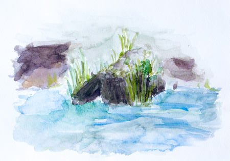 reed: Reed, watercolor background