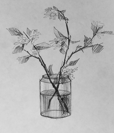 Vase And Flowers Pencil Drawing Stock Photo Picture And Royalty