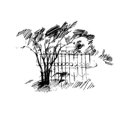 trees illustration: Trees, vector illustration