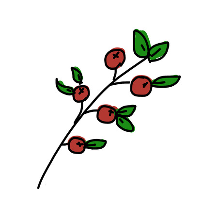 picking fruit: Small apple, vector illustration Illustration