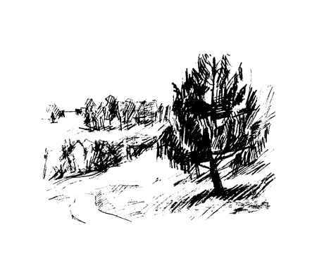 Forest, vector illustration for your design Illustration