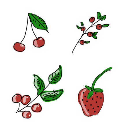 berry: Berry, vector illustration Illustration