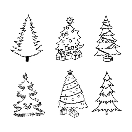 Pine, vector illustration on your canvas