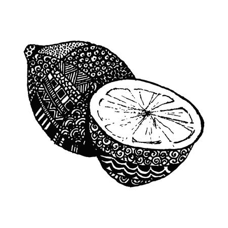 Lemon, vector illustration on your canvas