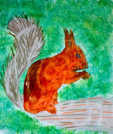 Squirrel, watercolor illustration