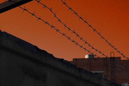 Barbed wire on a background of red sky. Deprivation of liberty. Restriction of freedom. Prohibited actions. Life agronomy. Punishment for assault. Prison term