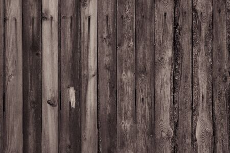 background from sepia boards. wooden boards background. embossed wood background. texture of the boards. wallpaper tree