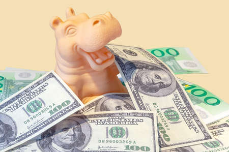 The hippopotamus rejoices in the money, emerging through them. The joy of making an income. Profit is an emotion. received an unexpected income