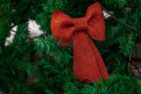 red bow close-up on spruce branch background Banco de Imagens