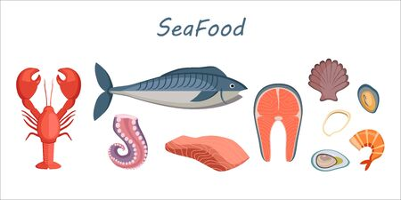 Set of cartoon sea food - tuna, salmon, clams, crab, lobster, octopus. Vector illustration, isolated on white. Collection product for restaurant