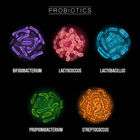 Collection of Different Probiotic Microorganisms Illustrations. Good bacteria and microorganisms for human health. Microscopic probiotics, good bacterial flora.