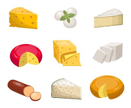 Cheese set. Yellow piece cheddar oval white mozzarella gouda slice blue mold roquefort smoked sausage chees slice vegetarian toffu feta, goat milk camembert. Fragrant color vector clipart. Ilustração