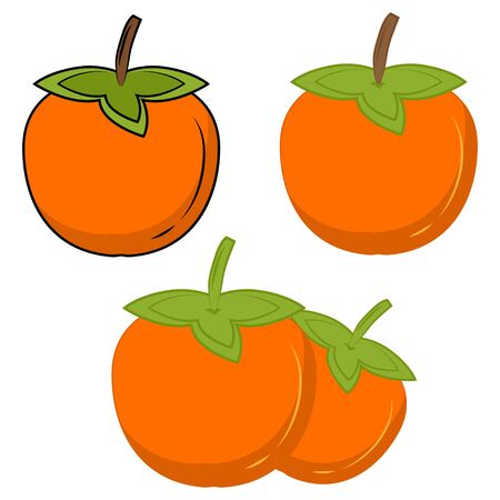 Persimmon color vector icon. Orange kaki fruit icon. Persimmon symbol. A flat vector simple element of sharon illustration, isolated on white background. Vector