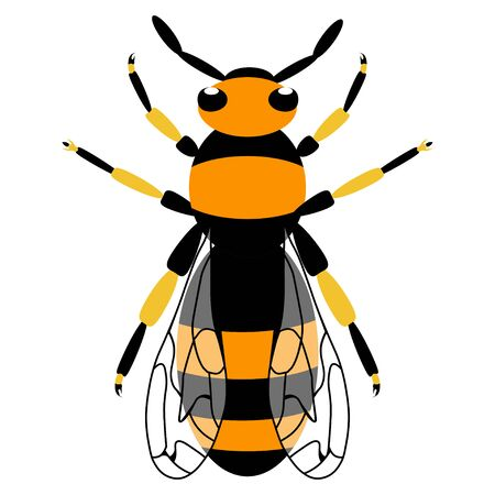 Wasp icon. Bee icon. Honey bee or wasp. Insect color wasp. A stinging insect. Flat design. Vector