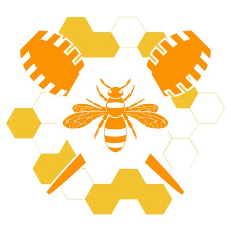 Honey bee or wasp. Honey with a bee or wasp and honeycomb in orange color isolated on white background. Modern flat design honey. Vector