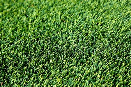 pasto sintetico: El fragmento de campo con hierba sintética