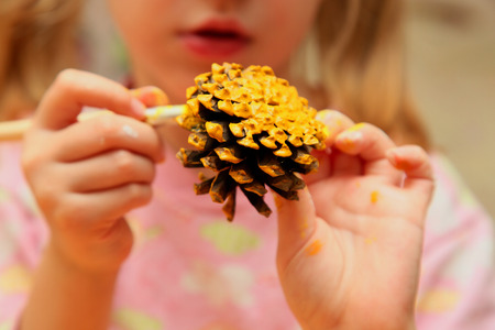 pine cone: The child painting pinecone in yellow colour